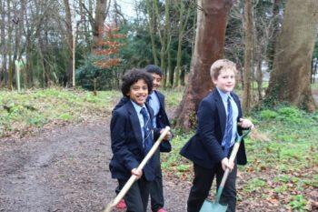 NFTS - Tree planting
